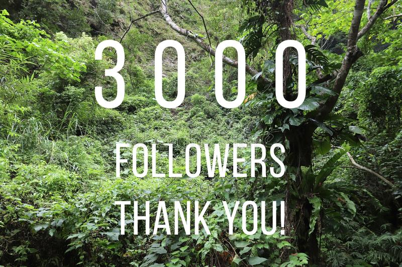 3000 followers. Banner - social media success sign. Online community thank you note. 3k likes royalty free stock image