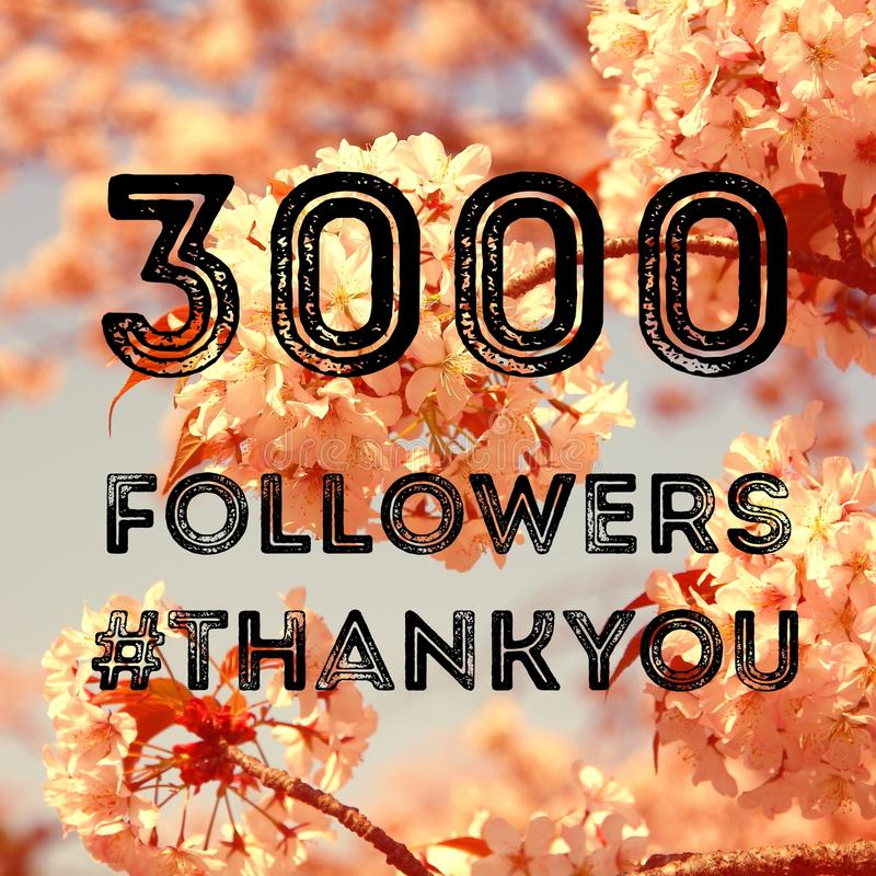 3000 followers. Company social media account thank you note. 3k fans stock photography