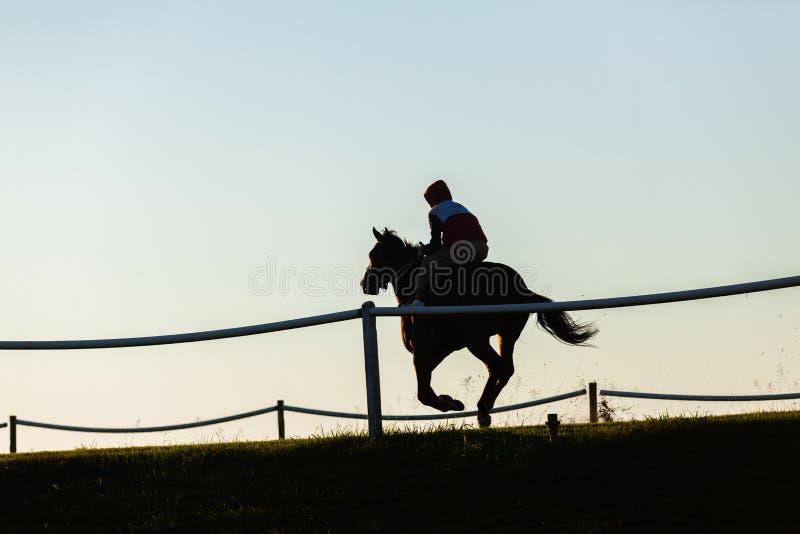 Fonctionnement de cheval de course photos libres de droits