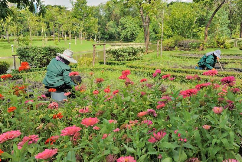 Fonctionnement de jardinier photographie stock