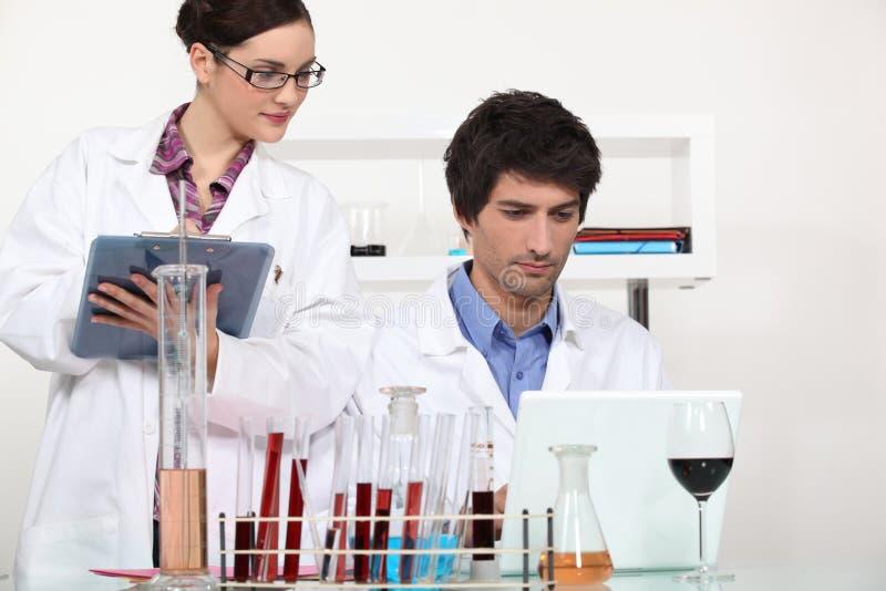 Fonctionner dans un laboratoire de vin photographie stock
