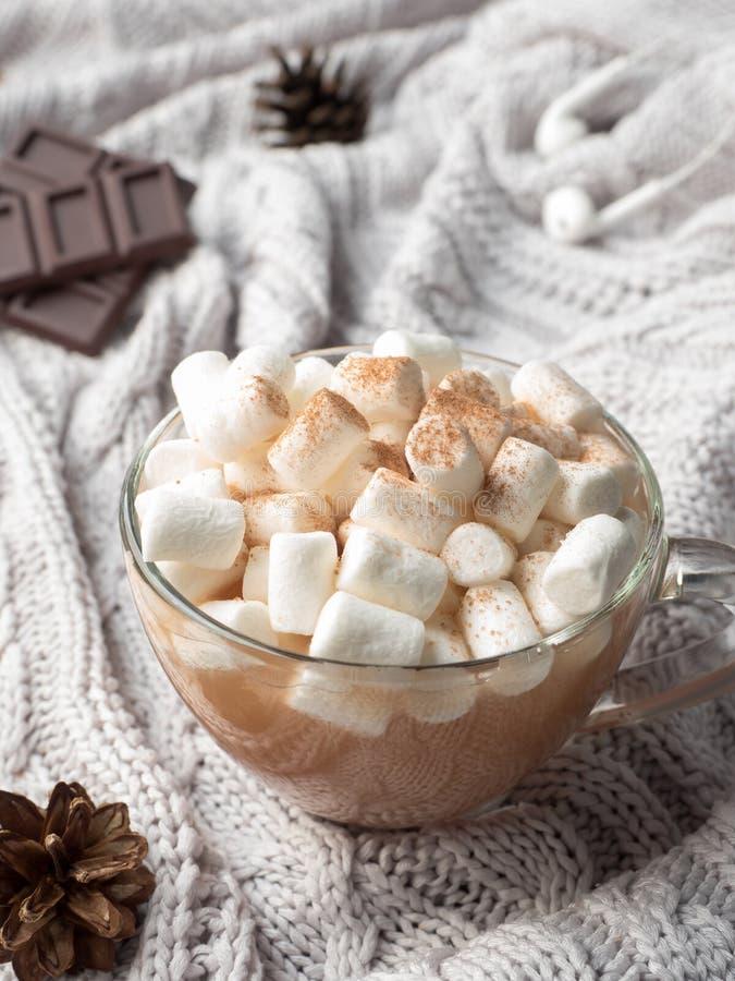 Fond à la maison d'hiver confortable Cacao dans une tasse en verre avec une guimauve, des cônes de cannelle de chocolat et des éc photos libres de droits