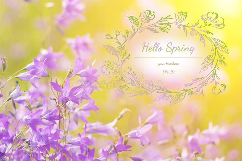 Fond élégant de ressort avec les wildflowers pourpres Bonjour ressort Carte de voeux d'aquarelle des fleurs Illustration de vecte photos libres de droits