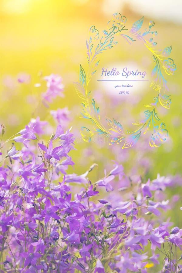 Fond élégant de ressort avec les wildflowers pourpres Bonjour ressort Carte de voeux d'aquarelle des fleurs Illustration de vecte image stock