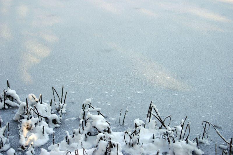 Download Fond 1 de l'hiver image stock. Image du neigé, glace, congelé - 66409