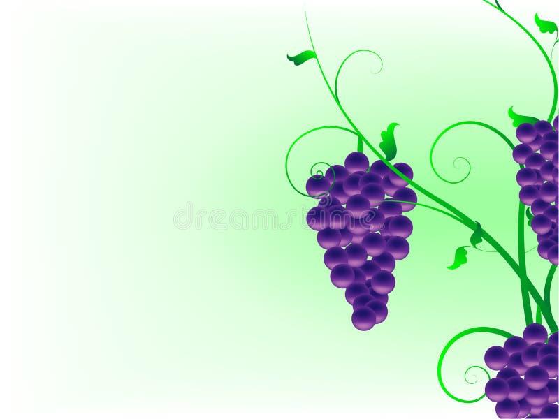 Fond abstrait avec des vignes illustration stock