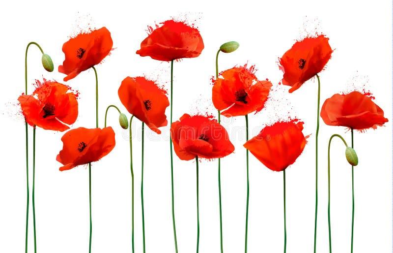 Fond abstrait avec les fleurs rouges de pavots photos stock
