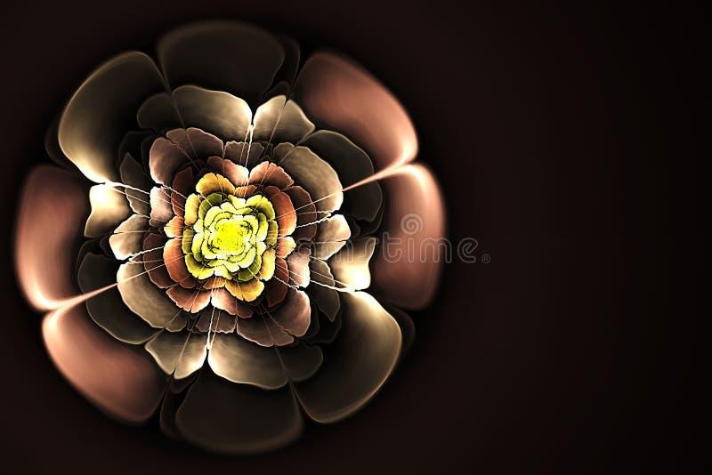 Fond abstrait de modèle de fleur de fractale images libres de droits