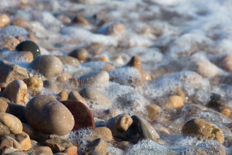 Fond abstrait de mousse de mer de cailloux photographie stock libre de droits