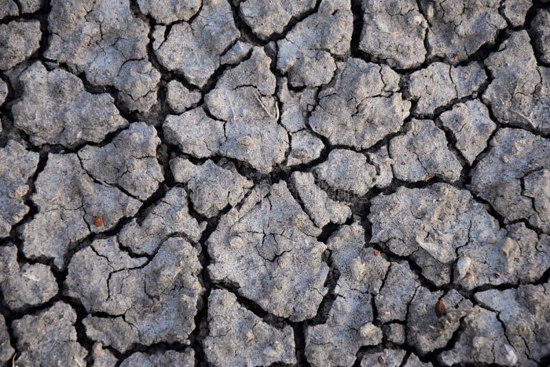 Fond abstrait de sol sec sécheresse Sol sec gris Fond de sol Fond criqué de saleté Modèle de la terre Texture de sol fissure images stock