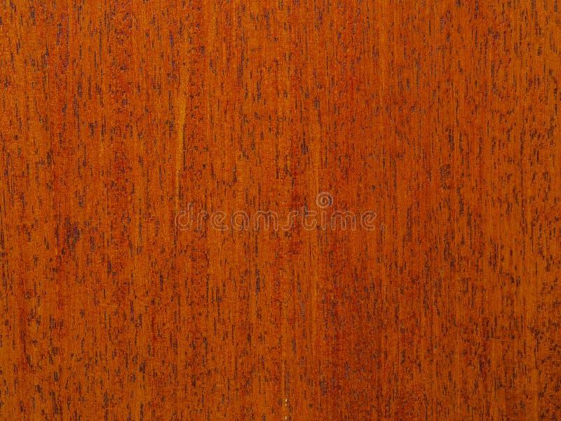 Fond abstrait de texture de séquoia photographie stock libre de droits