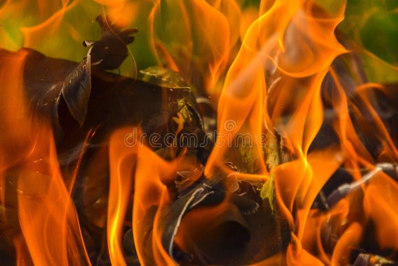 Fond abstrait du feu, charbons, flammes et éléments de vrillage de la cendre images stock