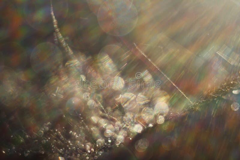 Fond abstrait - flashes et rayons de couleur claire sur le noir Fusée de lentille Pour l'usage comme couche de texture dans votre photos stock