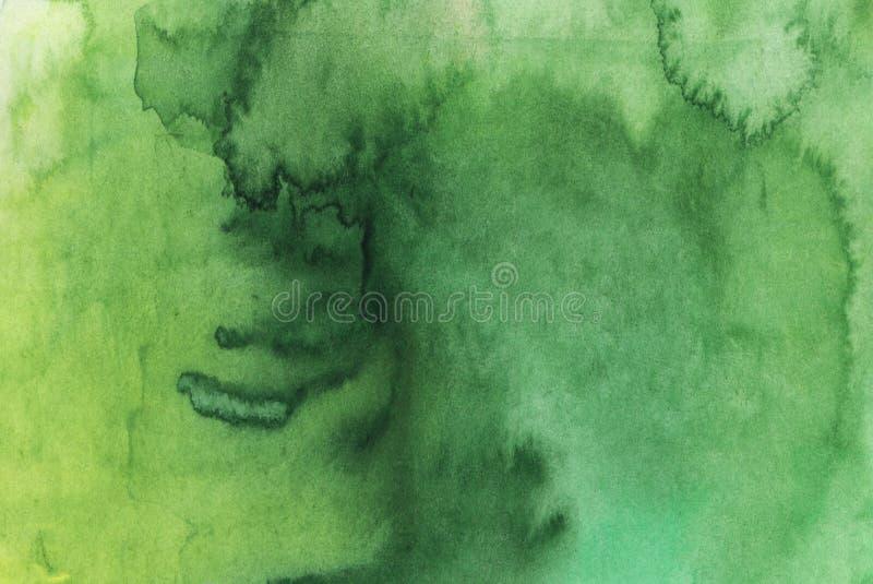 Fond abstrait lumineux de vert d'aquarelle photos libres de droits