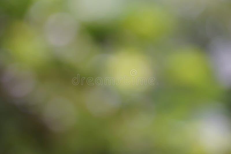 Fond abstrait vert pâle, jaune bokeh utilisé pour le papier peint et le design écologique photos stock