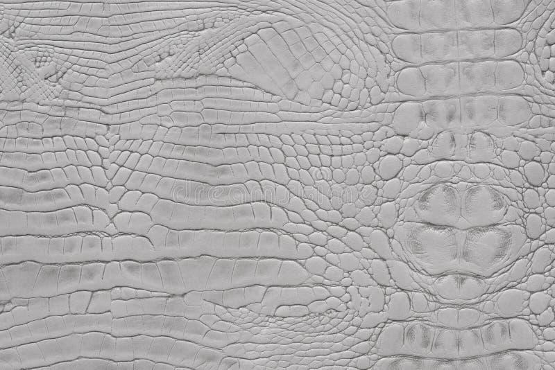 Fond animal de cuir de texture d'impression de serpent de couleur gris-clair photo stock