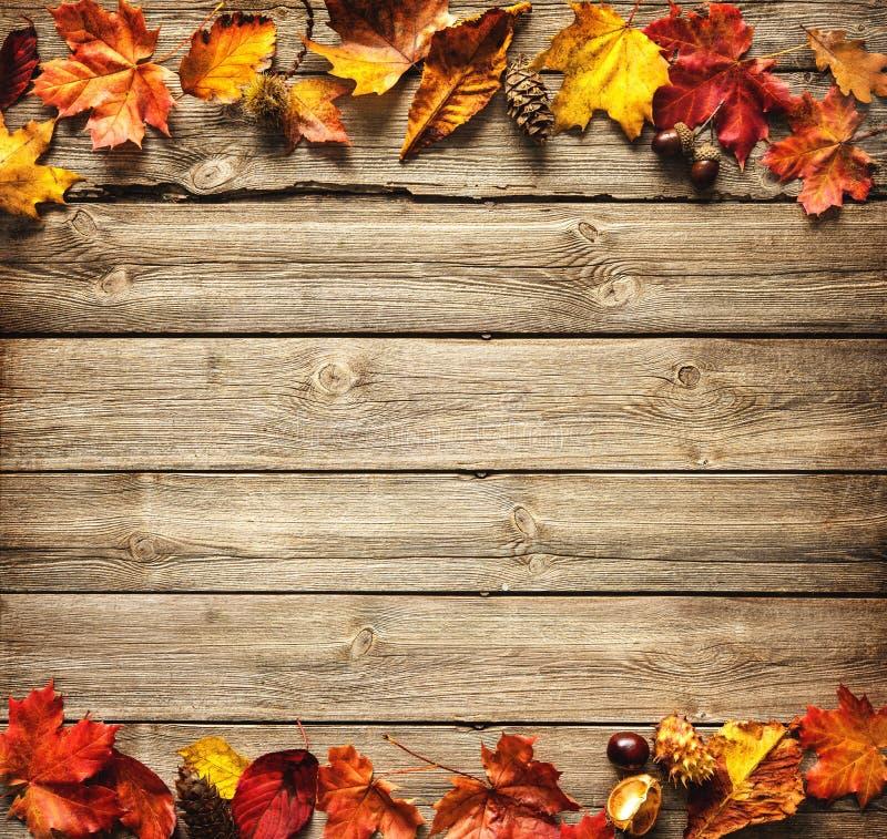 Fond automnal de thanksgiving photographie stock libre de droits