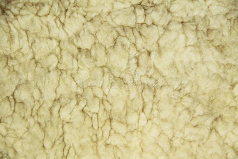 Fond avec de l'ouatine de moutons images stock
