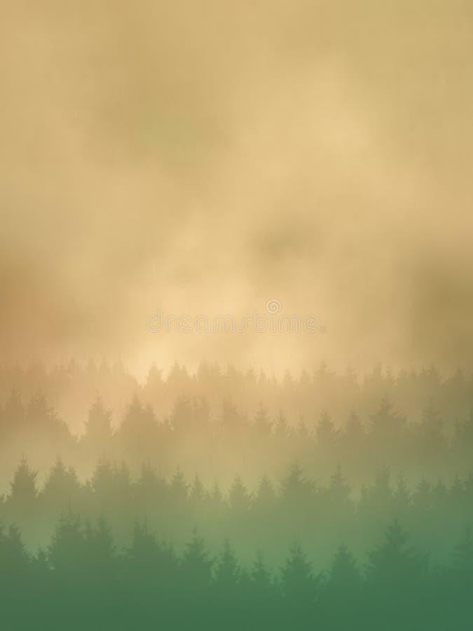 Fond avec des arbres photo stock