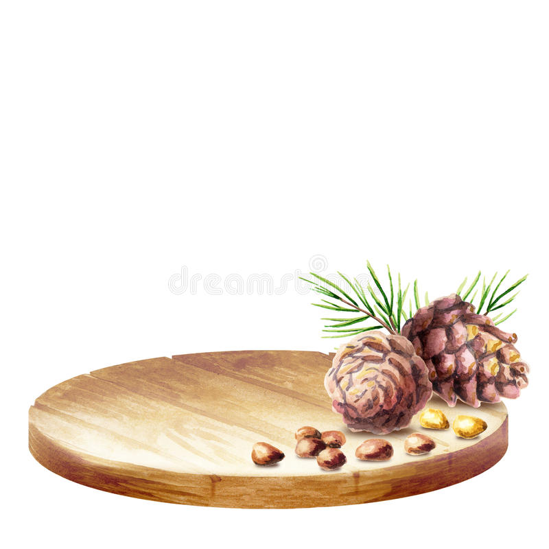 Fond avec des cônes de plateau et de pin avec des écrous watercolor photographie stock