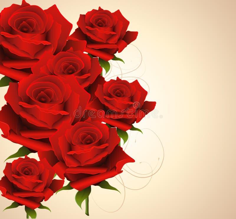 Fond avec des roses illustration stock