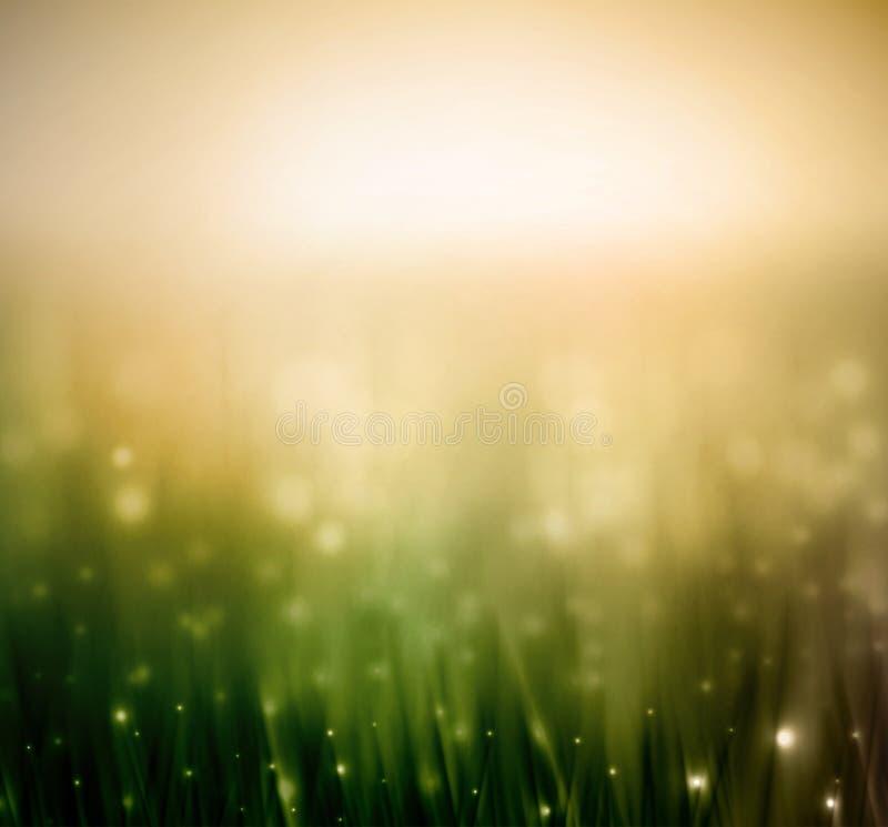Fond avec l'herbe illustration stock