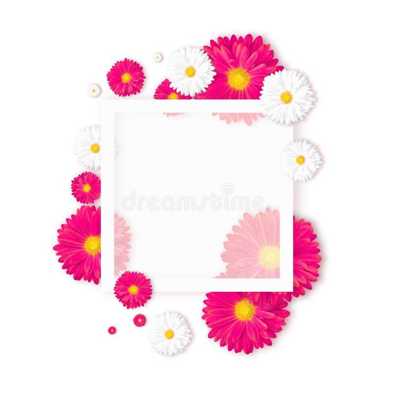Fond avec la belle fleur colorée Wallpaper les insectes, invitation, affiches, brochure, remise de bon image libre de droits