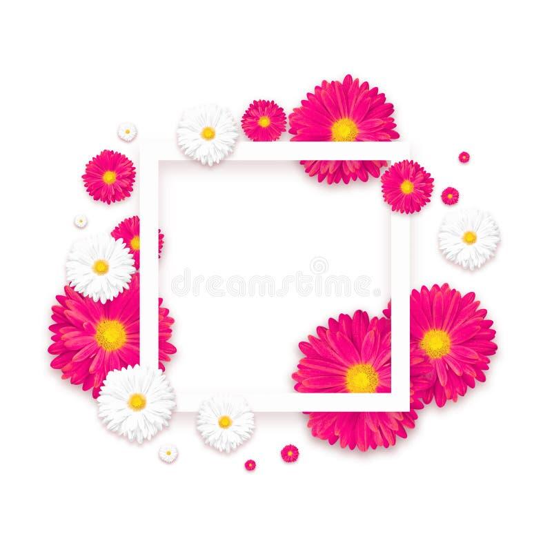 Fond avec la belle fleur colorée Wallpaper les insectes, invitation, affiches, brochure, remise de bon photos stock