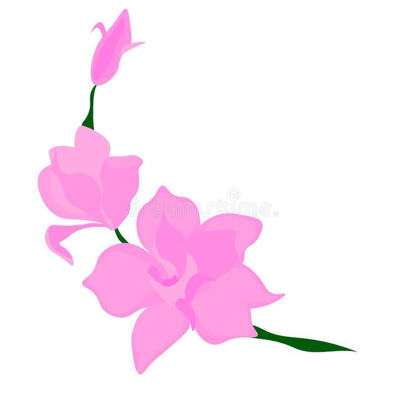 Fond avec la branche de fleur de la magnolia et du papillon roses Vecteur illustration libre de droits