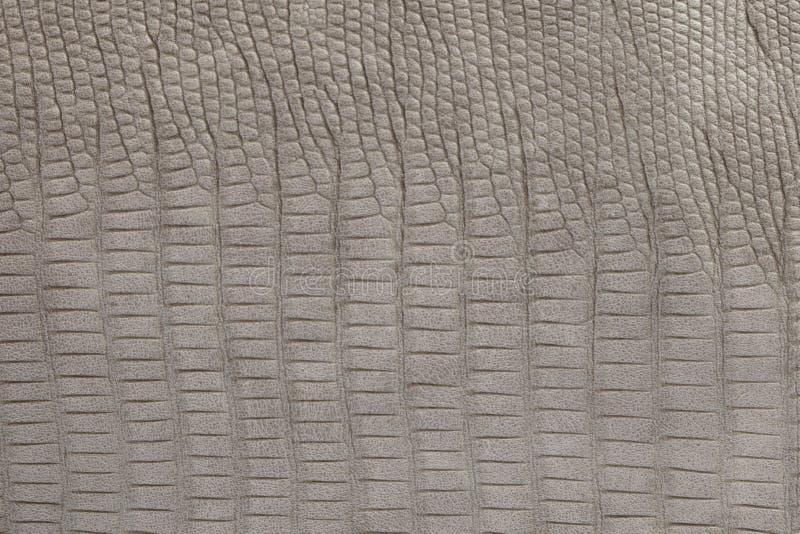 Fond avec le cuir gris d'eco de crocodile, fin image de photo vers le haut d'†« photographie stock libre de droits