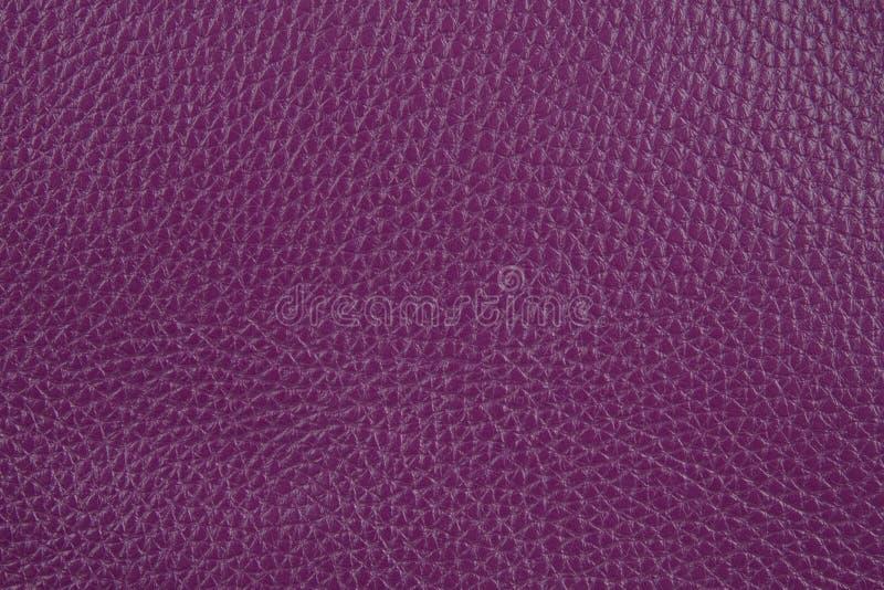 Fond avec le cuir lilas d'eco, fin image de photo vers le haut d'†« images libres de droits