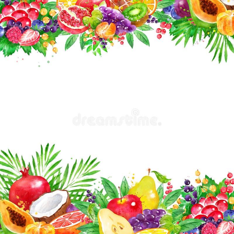 Fond avec le fruit frais et les baies illustration stock