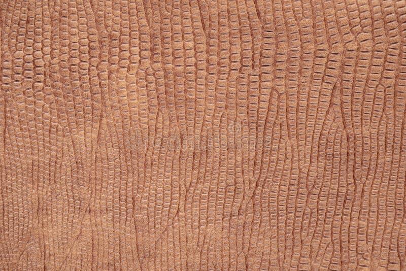 Fond avec le similicuir de reptile brun, fin image de photo vers le haut d'†« photos libres de droits