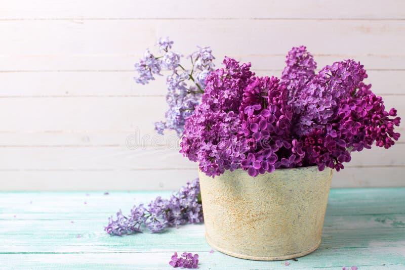 Fond avec les fleurs lilas dans la cuvette photos stock