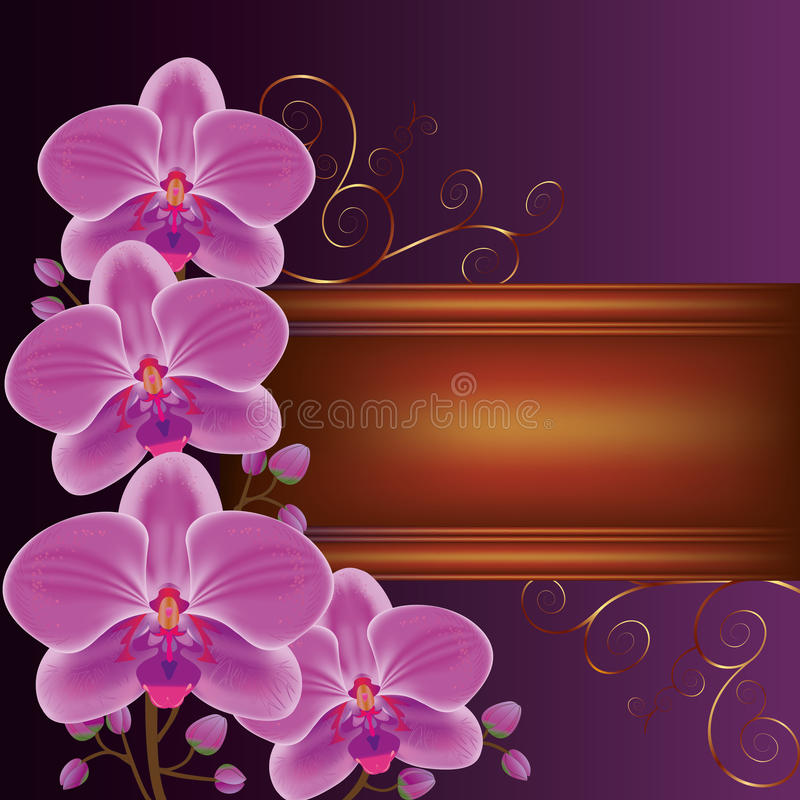 Fond avec les orchidées exotiques de fleur illustration stock