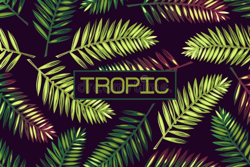 Fond avec les palmettes et le ` tropical de ` de mot lettrage tropiques Cadre exotics illustration stock