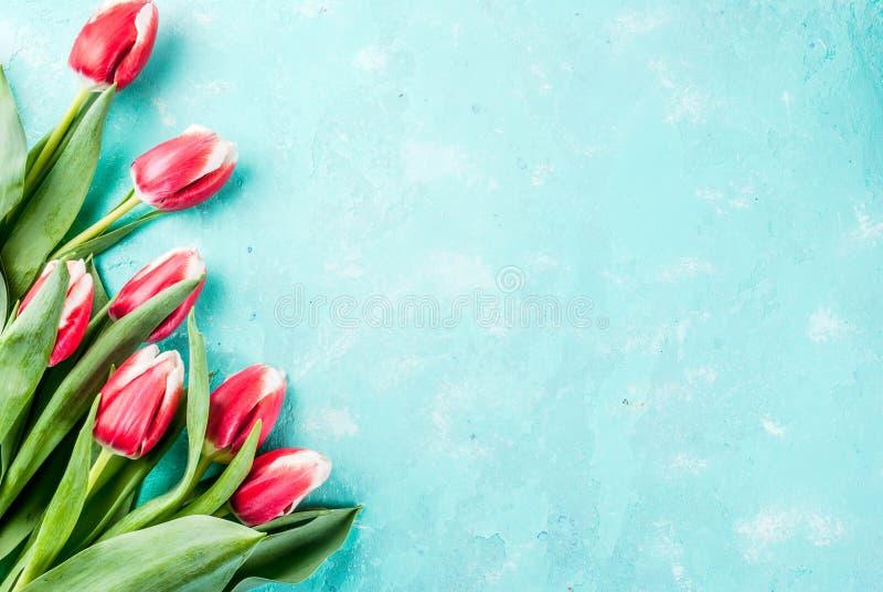 Fond avec Tulip Flowers photographie stock libre de droits