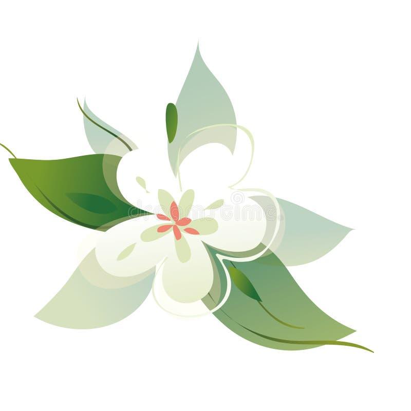 Fond blanc illustration stock