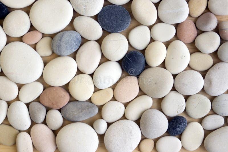 Fond blanc de cailloux, simplicité, lumière du jour, pierres image libre de droits