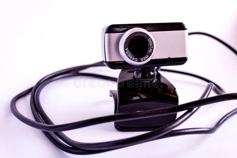Fond blanc de cameraon visuel de Digital photos stock