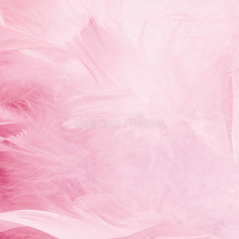 Fond bleu abstrait de plumes de ton Texture de Bohème de pastel de style de plume de mode de cru pelucheux de conception photo stock