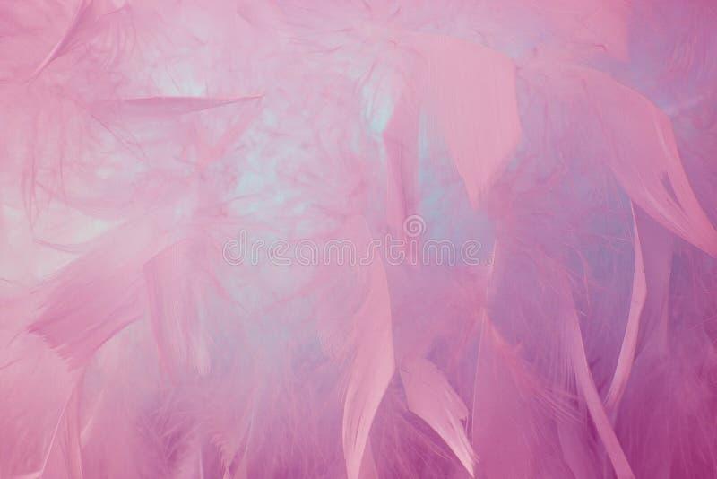 Fond bleu abstrait de plumes de ton Texture de Bohème de pastel de style de plume de mode de cru pelucheux de conception photos stock