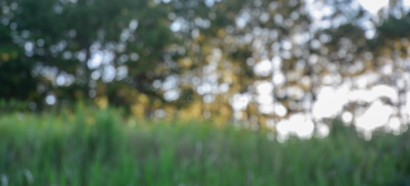 Fond brouillé d'or chaud de nature photographie stock