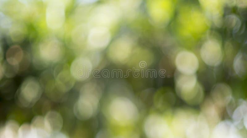 Fond brouill? de nature photo stock