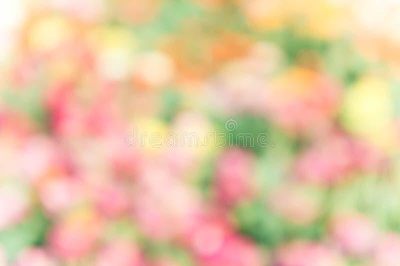 Fond coloré abstrait de tache floue de nature de mélange photo libre de droits