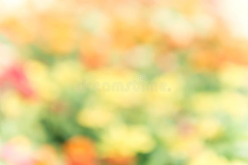Fond coloré abstrait de tache floue de nature de mélange images stock