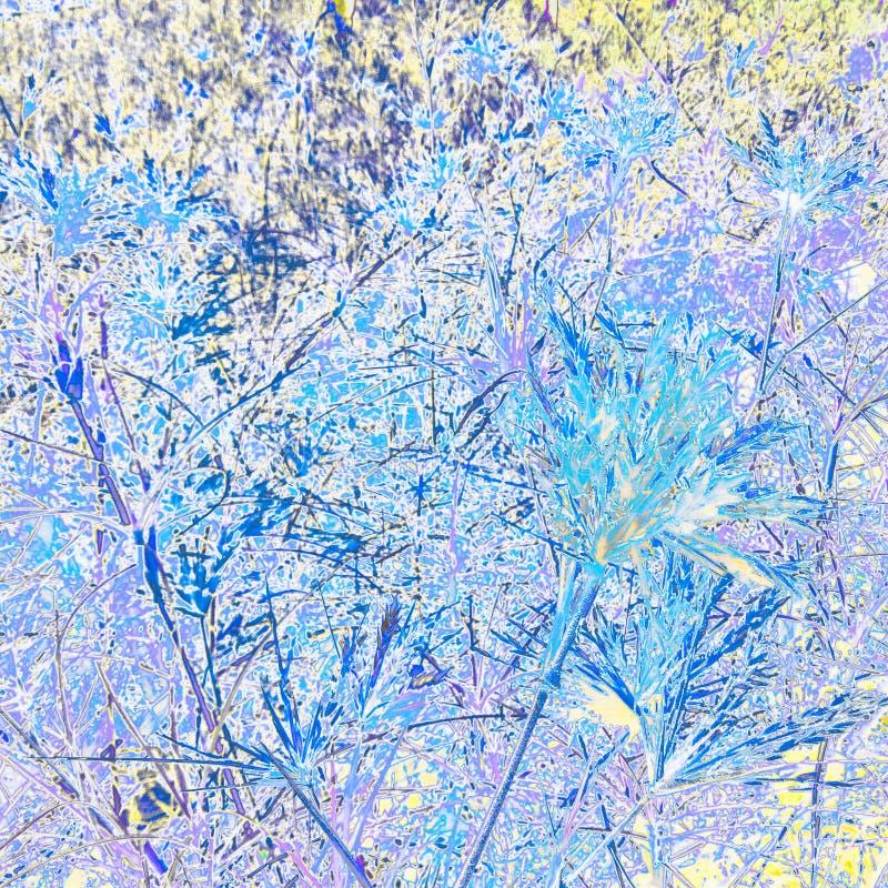 Fond coloré avec le modèle d'herbe et de feuille photo stock