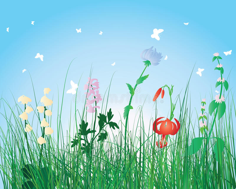 Fond coloré d'herbe illustration stock