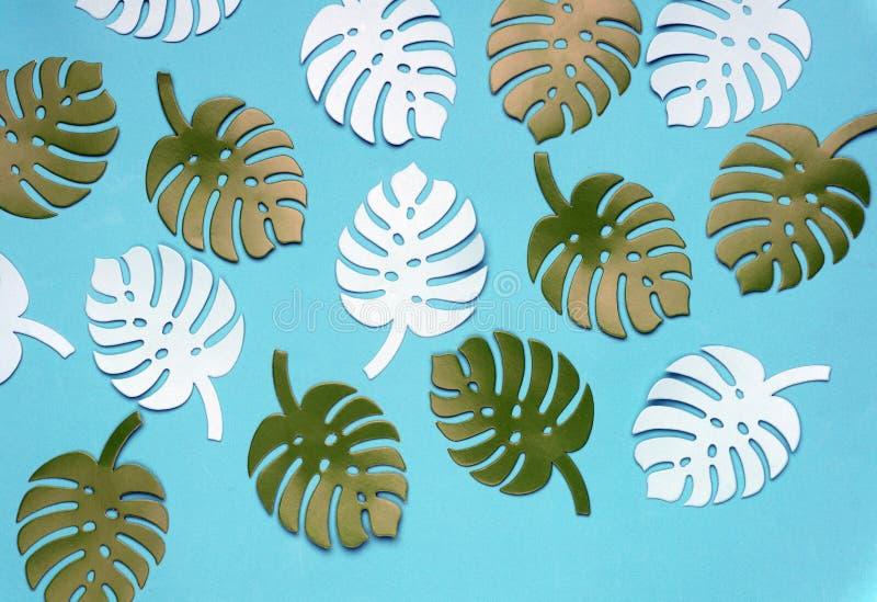 Fond coloré d'usine de monstera Monstera part sur le fond de corail de couleur Concept minimal d'été photos libres de droits