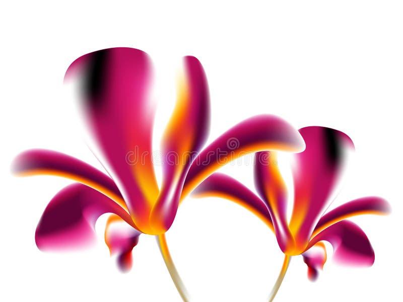 Fond coloré de fleur illustration de vecteur
